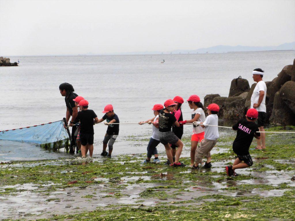 阪南市の海洋教育 海苔すき チリメンモンスター